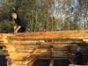 Opførelse af shelters på dambrugsarealet i Endrup